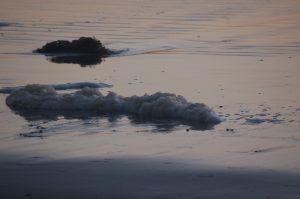 Sea foam still life...