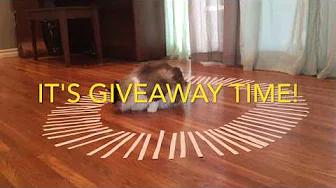 Video - Luna selects winners